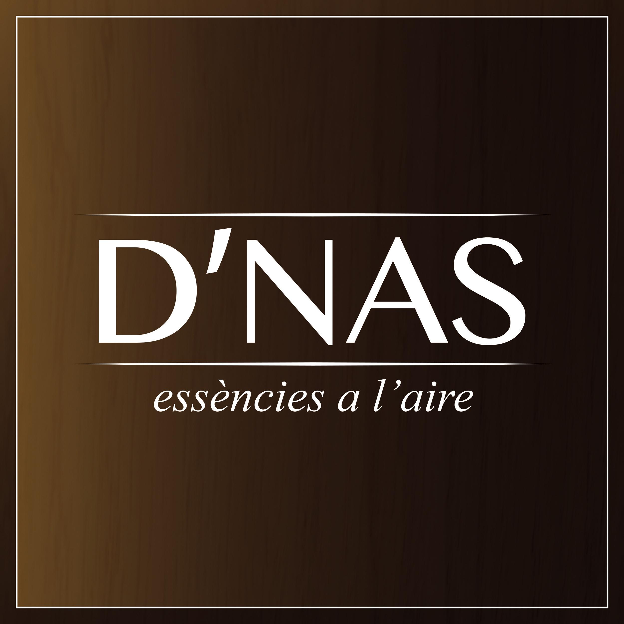 Logo comerç D'NAS