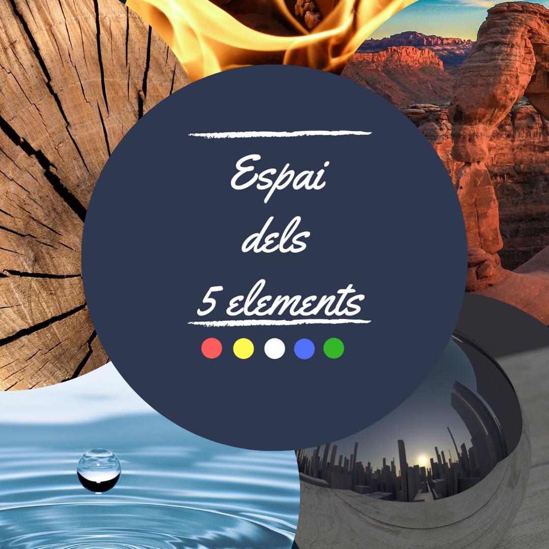 Logo comerç Espai dels 5 Elements