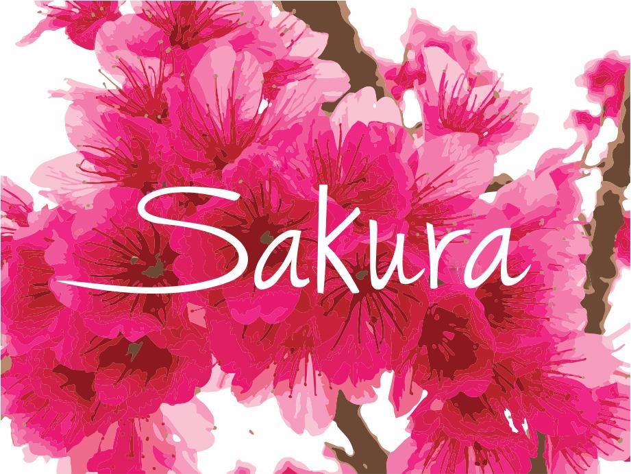 Logo comerç SAKURA