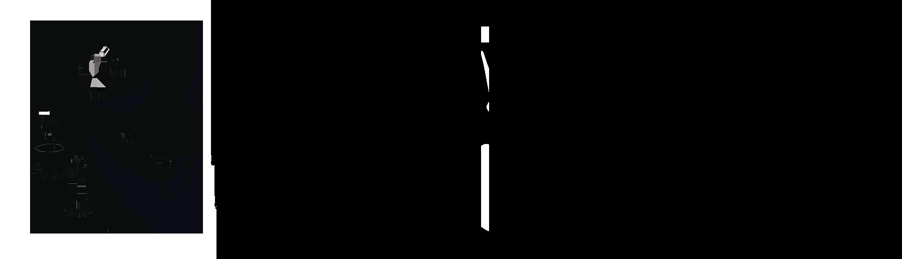 Logo comerç PINTURAS FIONA IBIZA
